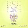 Haotat - Tibicines kunstwerk