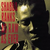 Shabba Ranks - House Call (Your Body Can't Lie to Me)