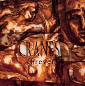 Cranes - Everywhere