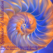 Shrotasvini (Relaxing Into the Music of the Breath) [feat. V.K. Raman] - Splendor of Meditation