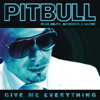Pitbull - Give Me Everything (feat. Ne-Yo, Afrojack & Nayer)  arte