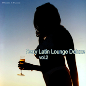 Sexy Latin Lounge Deluxe, Vol. 2