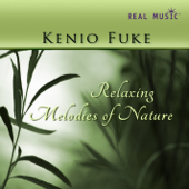Relaxing Melodies Of Nature