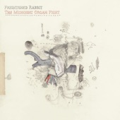 Frightened Rabbit - The Twist