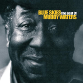 Baby Please Don't Go Live  Muddy Waters - Muddy Waters