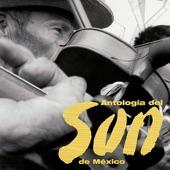 Conjunto de Juan Reynoso - La Tortolita
