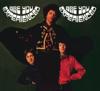 The Jimi Hendrix Experience - The Wind Cries Mary Grafik