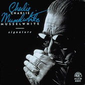 Charlie Musselwhite - It's Getting Warm In Here
