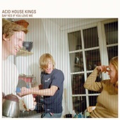 Acid House Kings - We're the Acid House Kings