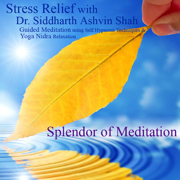 Stress Relief With Dr. Siddharth Ashvin Shah - Guided Meditation Using Self Hypnosis Techniques and Yoga Nidra Relaxation - Splendor of Meditation - Splendor of Meditation