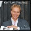 Odd Arne Sørensen - Fantasisnoa artwork