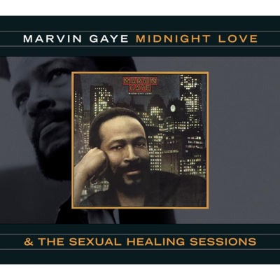 Sexual Healing - Marvin Gaye song