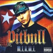 Pitbull - Culo