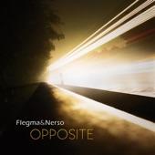 Flegma & Nerso - Sonic Manipulation