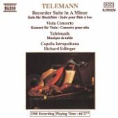 Georg Philipp Telemann - Viola Concerto in G Major, TWV 51:G9: III. Andante