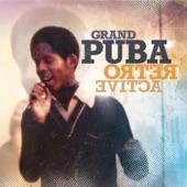 Grand Puba - Good To Go