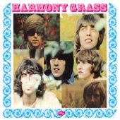 Harmony Grass - What a Groovy Day