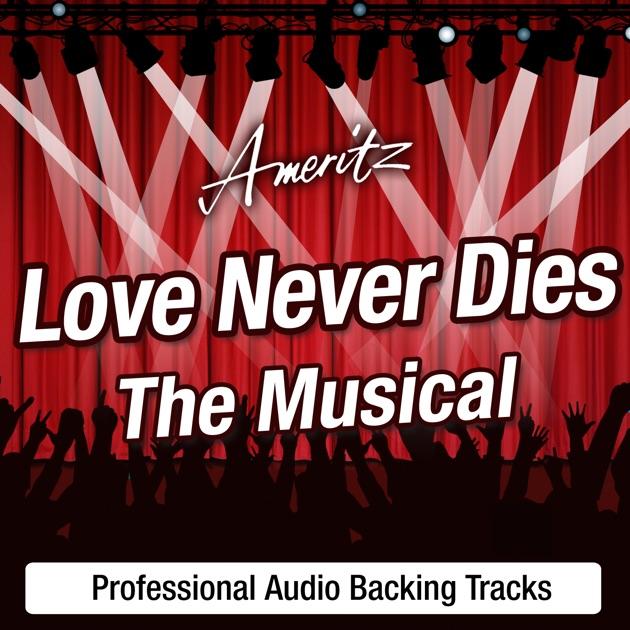 Sing Les Misérables: Backing Tracks by ProSound Karaoke Band