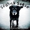 Seasick Steve - You Can't Teach an Old Dog New Tricks  artwork