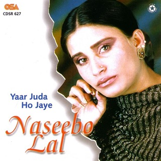 Sad Songs of Naseebo Lal, Vol  1 by Naseebo Lal on Apple Music