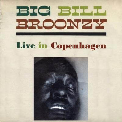 Live In Copenhagen - EP - Big Bill Broonzy