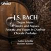 Hannes Kästner - Toccata and Fugue in D minor, BWV 565 artwork