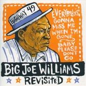 Big Joe Williams - Ain't Nothin' Like Whiskey