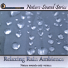 Relaxing Rain Ambience (Nature Sounds Only Version) - Nature Sound Series