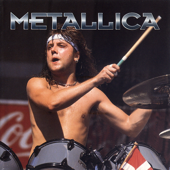 The Metallica Story: A Rockview Audiobiography