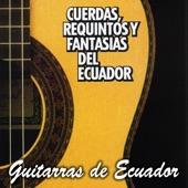 Guitarras de Ecuador - Vaso De Lágrimas