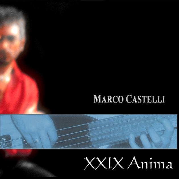 XXIX ANIMA di Marco Castelli