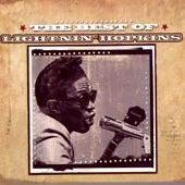 Lightnin' Hopkins - Shake that Think