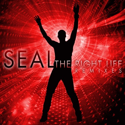 The Right Life - The Remixes - Seal