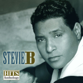 Hits Anthology, Vol. 1-Stevie B