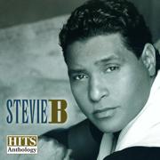 Hits Anthology, Vol. 1 - Stevie B - Stevie B