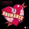 Tim Berg - Seek Bromance (Avicii Vocal Edit) artwork