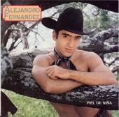 Cascos Ligeros Alejandro Fernandez