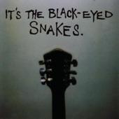 Black Eyed Snakes - Chicken Bone George