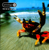 Smack My Bitch Up-The Prodigy