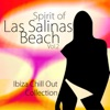 Spirit of las Salinas Beach Vol.2