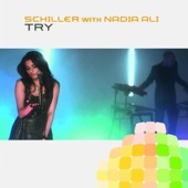 Try (Remixes) [with Nadia Ali]