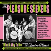 The Pleasure Seekers - Never Thought You'd Leave Me
