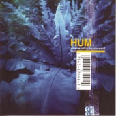 Hum - If You Are to Bloom