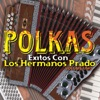 Polkas, Vol. 1