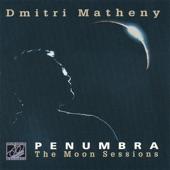 Listen to 30 seconds of Dmitri Matheny - Desert Moonlight
