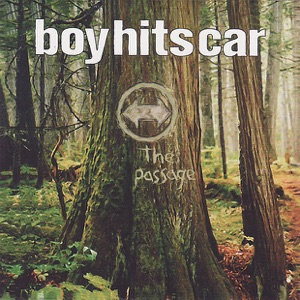 Boy Hits Car