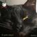 Edgar Allan Poe - El gato negro [The Black Cat] (Unabridged)