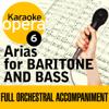 Karaoke Opera: Arias for Baritone & Bass - Various Artists