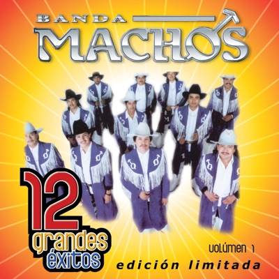 Banda Machos: 12 Grandes Exitos, Vol. 1 - Banda Machos