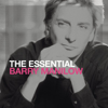 Somewhere Down the Road - Barry Manilow